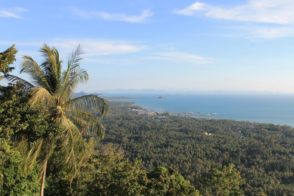 Samui Properties - Insiders Guide