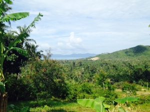 S586: 1.54 RAI SAMUI LAND WITH SEA VIEWS