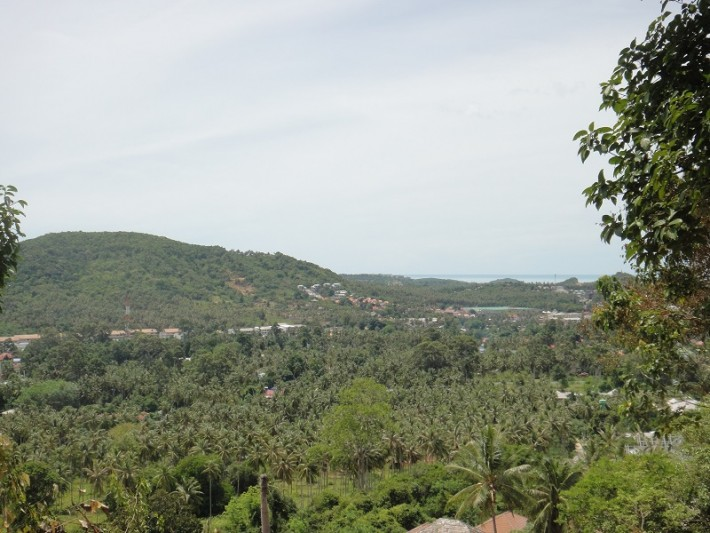 S276: 3 KOH SAMUI SEA VIEW LAND PLOTS FOR SALE