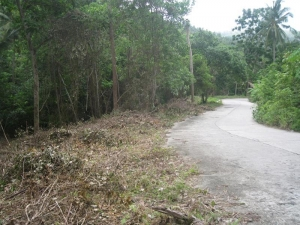 S687: 1.99 RAI SEA VIEW KOH SAMUI LAND PLOT FOR SALE
