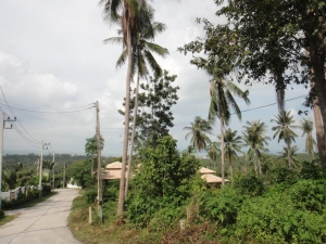 S413: SEA VIEW KOH SAMUI LAND PLOT FOR SALE