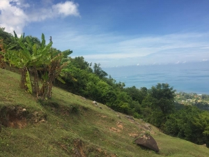S757: KOH SAMUI LAND PLOT FOR SALE WITH 180 DEGREE VIEWS