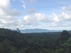 Koh Samui Sea View Land Plot For Sale Maenam