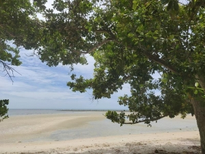 3 RAI BEACHFRONT LAND