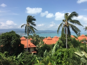 S1069: SEA VIEW VILLA FOR SALE BY THE BEACH