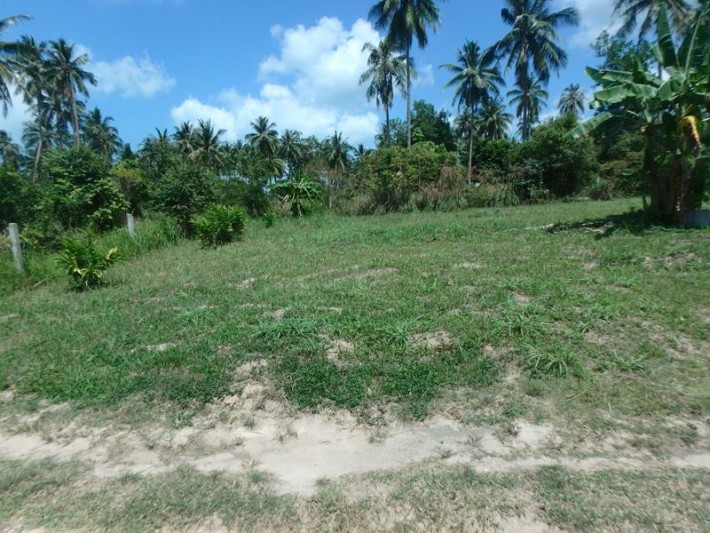 S1365: 0.5 RAI FLAT LAND - LEASE