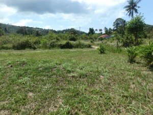 0.5 RAI FLAT LAND - LEASE