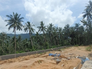 S1241: FLAT KOH SAMUI LAND PLOT FOR SALE WITH SCENIC VIEWS
