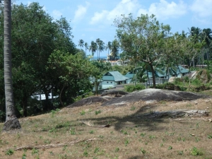 S1100: 1.83 RAI KOH SAMUI LAND PLOT FOR SALE WITH PARTIAL SEA VIEWS