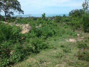 S1679: SEA VIEW KOH SAMUI LAND PLOT WITH FOR SALE
