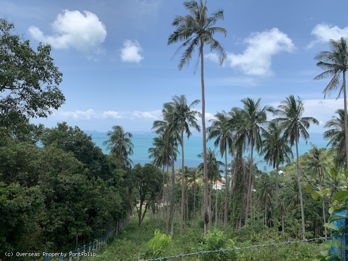 S1625: 30 RAI SEA VIEW KOH SAMUI LAND PLOT FOR SALE