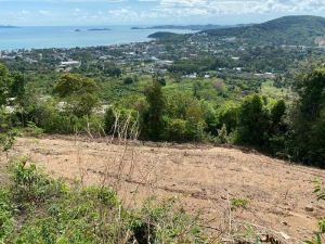 S1305: KOH SAMUI PLOT FOR SALE WITH SEA VIEWS & VILLA PLANS