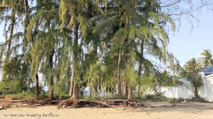 S1591: BEACHFRONT KOH SAMUI LAND PLOT FOR SALE
