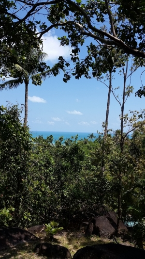 S1621: KOH SAMUI LAND PLOT FOR SALE WITH STUNNING VIEWS