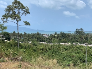 S1626: 2 RAI SEA VIEW KOH SAMUI LAND PLOT FOR SALE