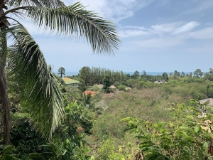 S1649: 3 RAI SEA VIEW KOH SAMUI LAND PLOT FOR SALE