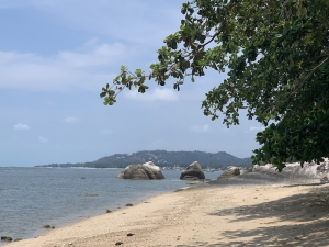 S1653: KOH SAMUI BEACHFRONT HOTEL FOR SALE - INVESTOR OPPORTUNITY
