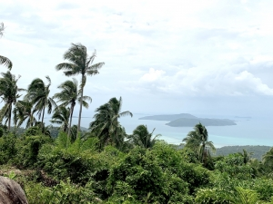 S1725: 30 RAI KOH SAMUI SEA VIEW LAND FOR SALE