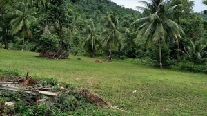 S1752: KOH SAMUI LAND FOR SALE WITH WEST FACING SEA VIEWS