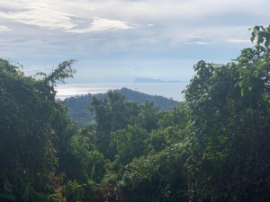 S1861: KOH SAMUI SEA VIEW LAND FOR SALE
