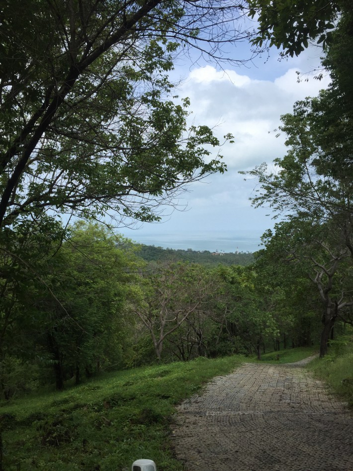 S962: KOH SAMUI LAND PLOT FOR SALE WITH SEA AND SUNSET VIEWS