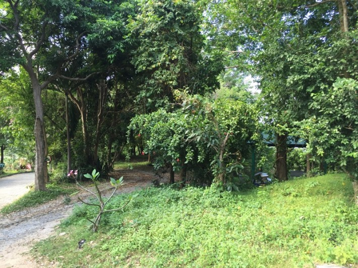 S1044: 1.71 RAI FLAT LAND FOR A PEACEFUL VILLA
