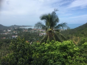 S1380: 1 RAI SEA VIEW KOH SAMUI LAND FOR SALE