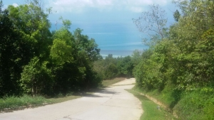 SAMUI LAND PLOTS FOR SALE