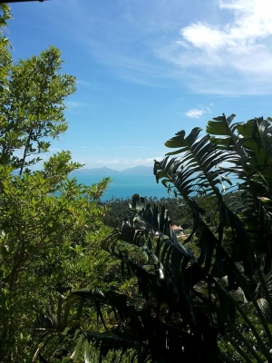 S1015: UNIQUE SEA VIEW KOH SAMUI VILLA FOR SALE & RENT