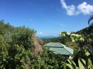 S1041: SEA VIEW KOH SAMUI LAND FOR SALE