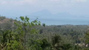 S1026: 13 RAI SEA VIEW KOH SAMUI LAND PLOT FOR SALE