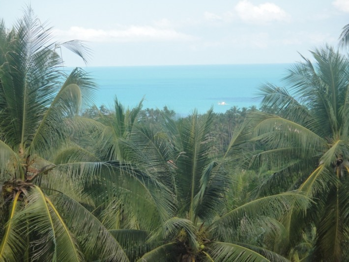 S1048: SEA VIEW KOH SAMUI LAND PLOT FOR SALE
