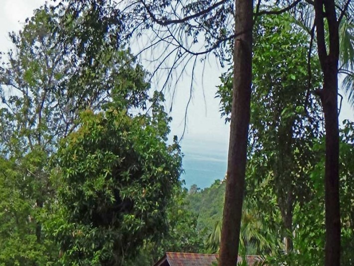 S1051: 1.04 RAI KOH SAMUI SEA VIEW LAND PLOT FOR SALE IN QUIET AREA